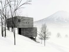 L House by Florian Busch Architects in Niseko, Japan