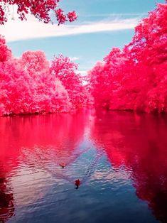Beautiful Cherry River,West Virginia