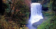 Image from http://www.oregonstateparks.org/index.cfm?do=main.loadImage&Image=Silver%20Falls%20State%20Park%5CMiddle%20North%20Falls-fromcontest.jpg.