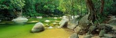 Mossman Gorge - Far North Queensland Queensland Australia, Australia Travel, Residential Land, Amazing Nature, Natural Beauty, National Parks, Around The Worlds, Tours, Places