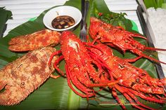 Catanduanes Day 2 - Puraran Beach-39.jpg