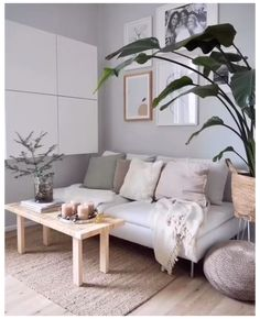 Living Room Accents, Boho Living Room, Cozy Living Rooms, Interior Design Living Room, Rugs In Living Room, Living Room Designs, Living Room Furniture, Living Room Decor, Room Rugs