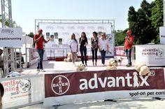 ADVANTIX RUNNING CONTRO L'ABBANDONO DEI CANI