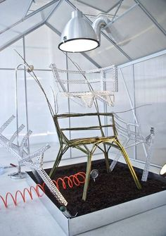 Designer Werner Aisslinger Grows A Chair In His Greenhouse