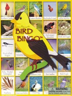 Bird Bingo Game includes 6 boards and 42 information cards. Match pictures to win the game!  Ages 4 and up. 2 - 6 players or play in teams for larger groups.