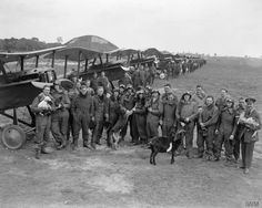The staff of 85 squadron with many living talismans and materiel from the S. E. 5A fighters at the airfield of St Omer in June 1918