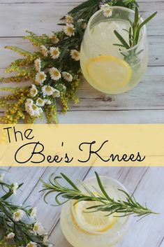 The Bee's Knees was a Prohibition Era cocktail that used sweet honey to help hide the harsh aroma & taste of home concocted gin. It consists of Gin, Fresh Lemon, & Honey. I'm also adding Rosemary & Vanilla for a classic twist! Fancy Drinks, Fun Cocktails, Summer Drinks, Cocktail Drinks, Cocktail Recipes, Alcoholic Drinks, Beverages, Gin Drink Recipes, Slushies