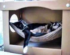 Ingenious #hammock enclosed in a sturdy cardboard box. Take a look at 10 pet hammock ideas at: http://impressivemagazine.com/2013/07/23/10-pet-hammock-ideas/#more-12217