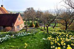 Un jardin perché dans les hauteurs    Photographe : Rachel Warne