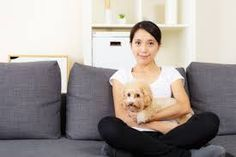 asian woman with dog - Pesquisa Google