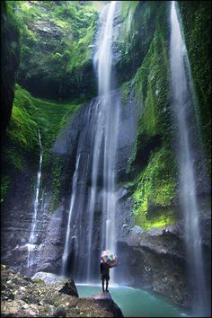 Wow... Amazing waterfall ! (Madakaripura Waterfalls, Probolinggo, Indonesia)