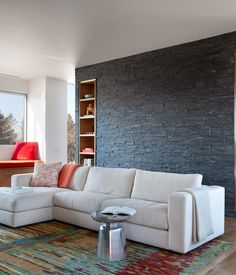 the residents worked with interior designer sasha nostrand to selecte furniture the sofa is from living room contemporarymodern living roomsliving