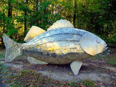http://fineartamerica.com/featured/metal-fish-on-fish-lisa-wooten.html