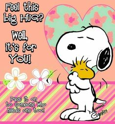 Hug Images, Snoopy Images, Snoopy Pictures, Snoopy Hug, Snoopy Love, Snoopy And Woodstock, Charlie Brown Quotes, Charlie Brown And Snoopy, Hug Quotes