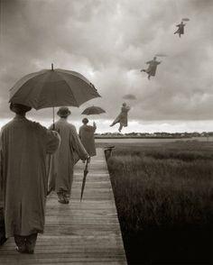 I'll Fly Away -- Datura