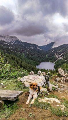 Tauplitz im Sommer – nur Natur Mountains, Nature, Travel, Hiking, Summer, Naturaleza, Viajes, Destinations, Traveling