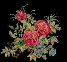 Botanical Flowers, Botanical Art, Circle Canvas, Overlays Cute, Border Design, Clean Design, Flower Art, Floral Wreath, Clip Art