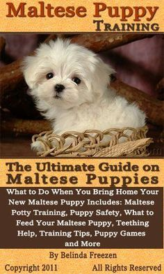 Maltese Puppy Training: The Ultimate Guide on Maltese Puppies, What to Do When You Bring Home Your New Maltese Puppy by Belinda Freezen. $3.87. 53 pages