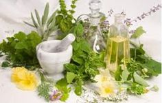Herbs and essential oils for fungal infections - Chiropractic and Natural Health Centers | AlignLife