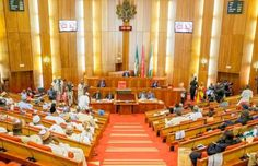 Appointment of Uniagric Registrar: Idoma people petition Senate over marginalization -  Click link to view & comment:  http://www.naijavideonet.com/appointment-of-uniagric-registrar-idoma-people-petition-senate-over-marginalization/