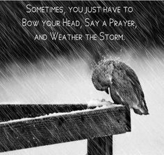 Sometime you just have to bow your head, say a prayer and weather the storm.