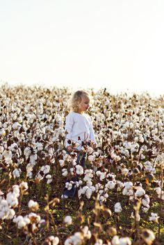 pics of cotton fields | Warm, Hazy Children's Photoshoot in Alabama Cotton Fields by @Amanda ...