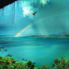 Um mar tão azul que se mistura com o céu! Amamos o nordeste brasileiro amamos Salvador. A foto  é da @lorealvarez08 nossa seguidora mais participativa de Salvador! Envie você também fotos de Salvador para a gente é só marcar com #CatracaSalvador. O que mais essa cidade linda tem a oferecer além claro desse marzão? Conta pra gente nos comentários! #ViNoCatraca