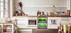 Conheça o nano-jardim, uma horta que cabe dentro da sua cozinha