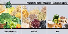 Kohlenhydrate, Proteine und Fette in der veganen Ernährung