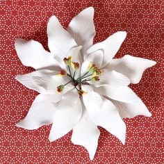 Large Poinsettia cake decoration great for decorating Christmas cakes | CaljavaOnline.com