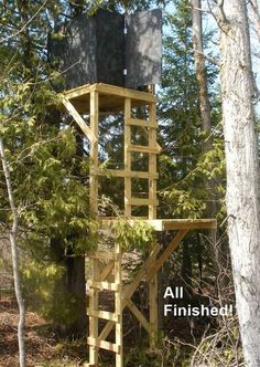 Want to up your deer hunting game? Building a deer stand on your property can help. Learn how to do it yourself with these free deer blind plans. Deer Hunting Games, Quail Hunting, Deer Hunting Blinds, Duck Hunting, Deer Camp, Archery Hunting, Turkey Hunting, Crossbow Hunting, Hunting Stuff