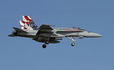 Ellington Field...... Silver Eagles visit.. VMFA-115 Color bird