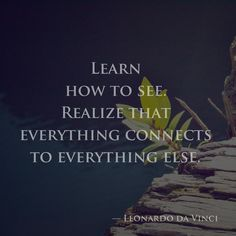 Learn how to see. Realize that everything connects to everything else. — Leonardo da Vinci