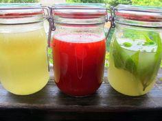 Wasserkefir -paleo- Rezept  - Gesund Abnehmen! Low carb, wenig Kohlenhydrate und viel Fett! Den Zucker im abgekochten und abgekühlten Wasser unter Rühren auflösen. Die Kefirknöllchen, die Aprikose und Zitronenscheibe zugeben. Nicht bis zum Rand füllen. Mit Frischhaltefolie und Einmachgummi schließen, damit keine Fruchtfliegen angelockt werden. Den Wasserkefir 2 Tage bei Zimmertemperatur stehen lassen. Evtl. das Glas in eine Schüssel stellen, falls der Kefir überschäumt. Das Glas nicht fest