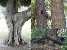 Lols: You Dirty Mind!