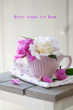 Minty House Blog!  Flowers in a teacup!           Aline ♥