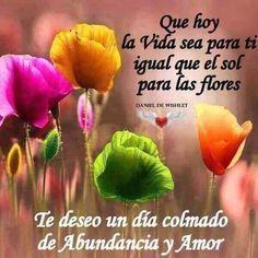 Que hoy la vida sea para ti igual que el sol para las flores. Te deseo un día colmado de abundancia y amor. Compártelas, no te arrepentirás, tarjetitas ondapix