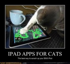 There's an app for that....hmmm, kitty looks a little familiar...