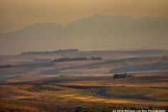 Still 50 km to go to the Riviersonderend Mountains (horizon). A personal experience of living in the Overberg, Western Cape, South Africa. Copyright Images, South Africa, Van, To Go, Fine Art, Spaces, Mountains, Landscape, World