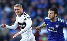 Cardiff City, Football Highlight, Match Highlights, Fulham, Premier League