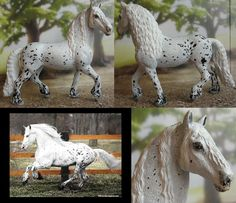 Schleich Frisian stallion is now an appaloosa-cross. Love this guy! (The real horse is Mystic Warrior.)