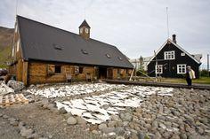 Safnastarf við Byggðasafnið. Þurrkaður saltfiskur.