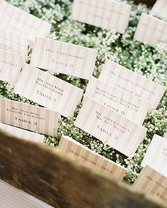 Escort cards in greenery-filled wooden box (baby's breath I think) Britt Chudleigh