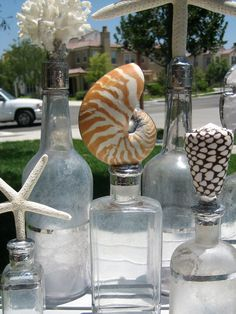 Soldered Nautilus Shell on Antique Bottle - Laguna Series No. 2