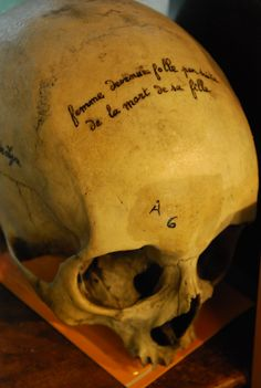 """>Musée Testut Latarjet. Lyon, France. On this skull is written, """"Woman gone crazy after her daughter's death."""""""