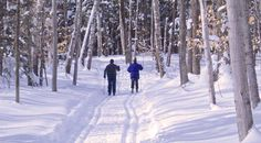 Winter Nordic Skiing in Peninsula State Park is amazing