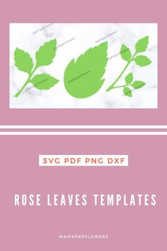 These paper rose leaves templates   Svg are amazing for your paper roses. They are printable and can be used with Cricut, Silhouette cutting machines. Click through for more views and to find it at affordable cost!!! #paperroseleaves #roseleavessvg #leavestemplate #roseleavestemplate #roseleavescricut #paperrosesvg Flower Stamen, Flower Svg, Flower Template, Big Paper Flowers, Giant Paper Flowers, Paper Roses, Leaf Template Printable, Paper Cutting Machine, Rose Leaves
