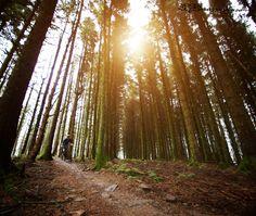 Wales golden hour  | Vital MTB