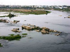 The Triveni Sangam in Erode is a confluence of 3 rivers, the Cauvery, Bhavani and Amudha. Of these three, the river Amudha is invisible and is said to flow underground and join the other two rivers from below. It is also called as Kooduthurai, where the famous Sangameswarar Temple is located. It is the well-known Tiriveni Sangama of South India. Pic of - Kaveri River -