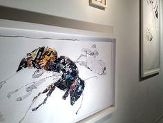 Tom Cocotos artist bees - Google Search